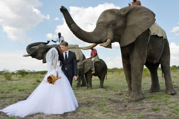 african-safari-wedding-1