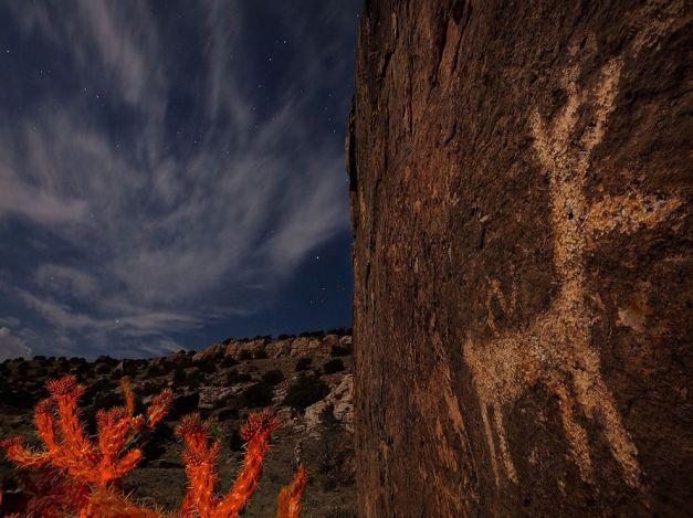 petroglyph-cactus-colorado_75340_990x742